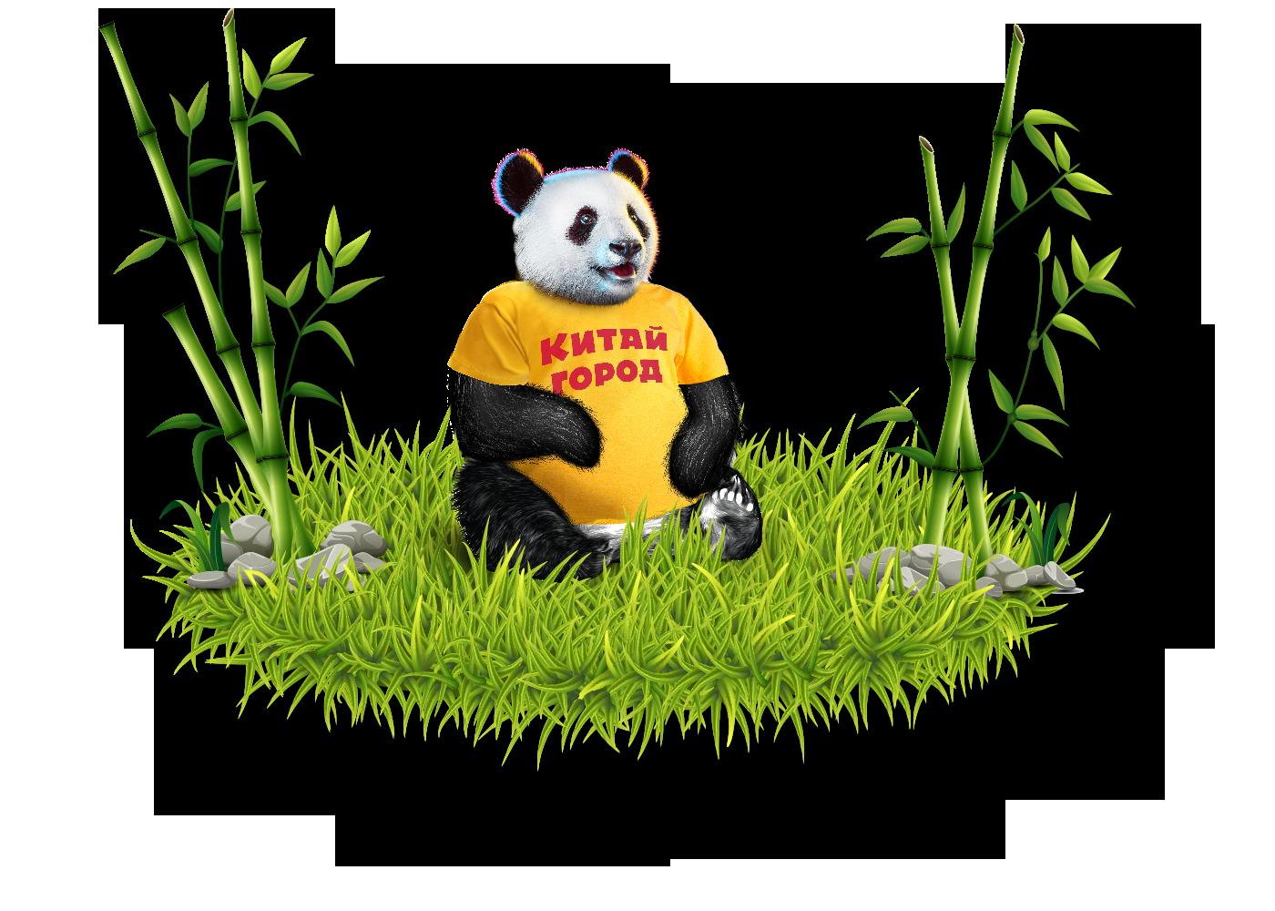 AR-панда в Китай-городе